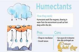 Nhóm chất humectant cấp ẩm