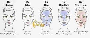 Phân biệt các loại da cơ bản