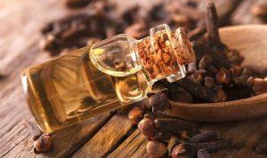 Tinh dầu đinh hương trị mụn ngừa lão hóa