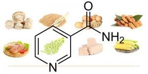 Niacinamide - Vitamin B3