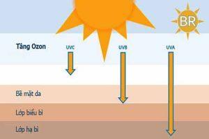Ảnh hưởng của tia UV lên da