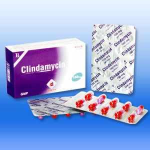 Kháng sinh clindamycin