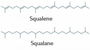 Squalane là gì? Phân biệt Squalane và Squalene